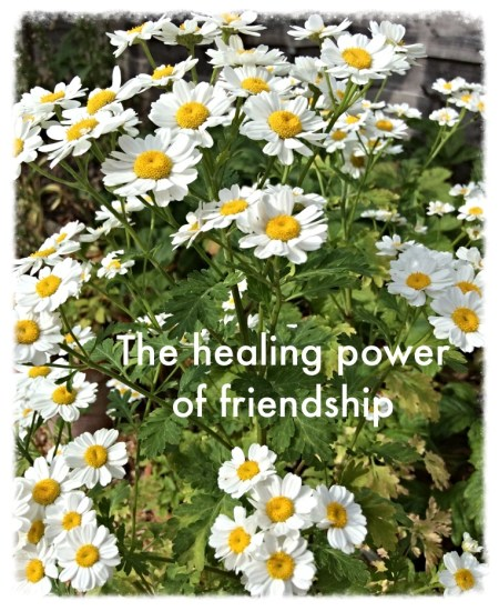 the healing power of friendship