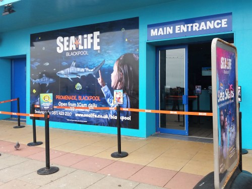 Days Out: Blackpool Sea Life Centre