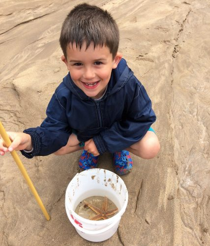 Days Out: Rockpooling in North Devon