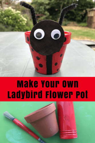 Crafts: Make Your Own Ladybird Flower Pot