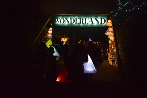 Review: The Lanterns at Chester Zoo