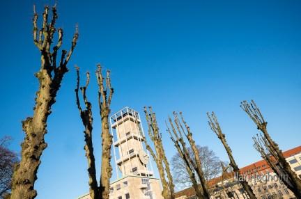 Forår Rådhusparken Aarhus