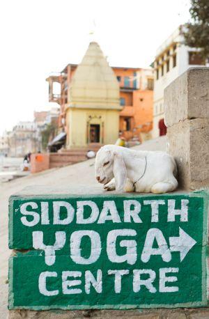 2011_03_15_Varanasi_065.jpg
