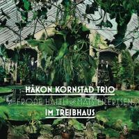Håkon Kornstad Trio: Im Treibhaus [2019]
