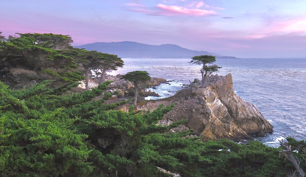 The Lone Cypress is an iconic stop along 17-mile-drive.