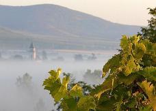 El clima de Tokaj