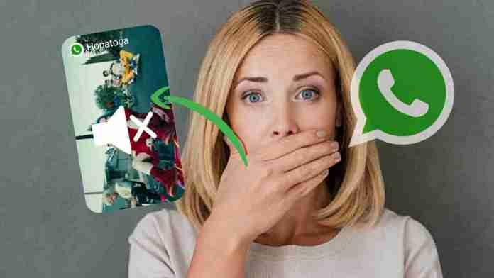 WhatsApp new video mute feature