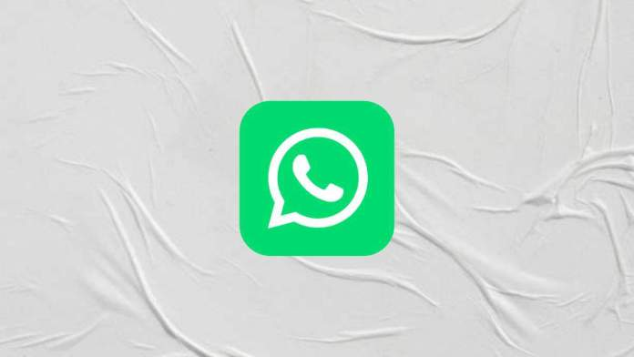 WhatsApp new UI - Business Info