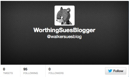 @walkersuesblog