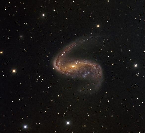 Distorted galaxy NGC 2442