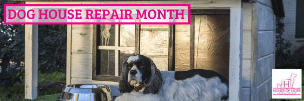 Dog House Repair Month