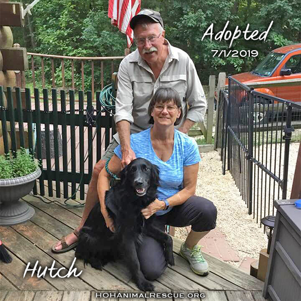 Hutch - Adopted 07/01/2019