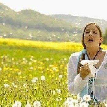 Allergies do not have to ruin your day!