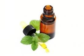 Peppermint oil helps relieve holiday stress!