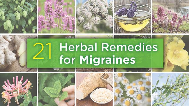 21-Herbal-Remedies-Migraines