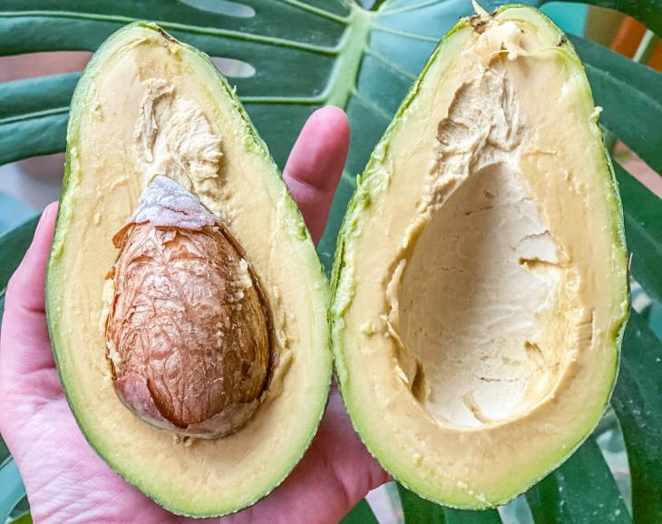 How to Ripen Avocados Perfectly