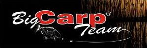 bigcarp.com