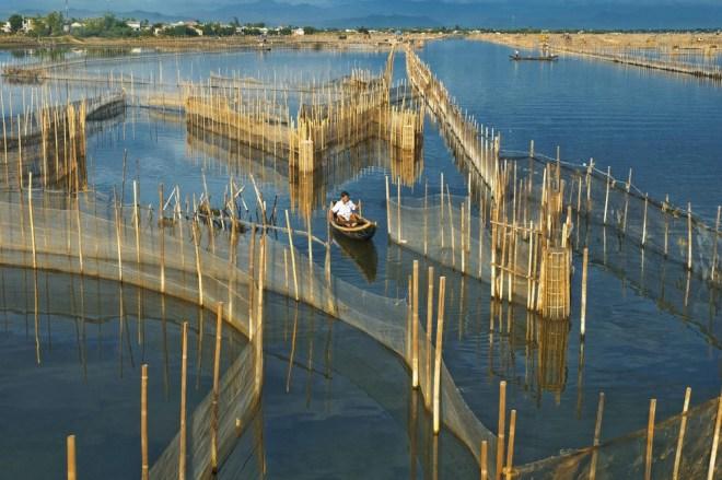 Sunrise on Tam Giang Lagoon Tour- Hoi An Private Car