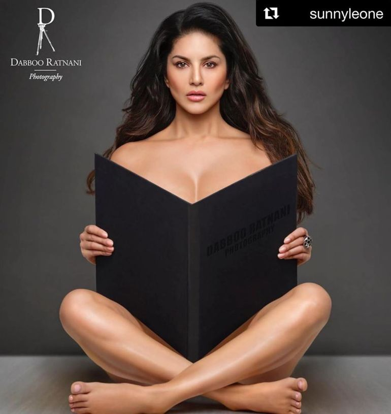 Top 15 Bollywood Actress Topless for The Photo Shoot of Dabboo ratnani calendar 109