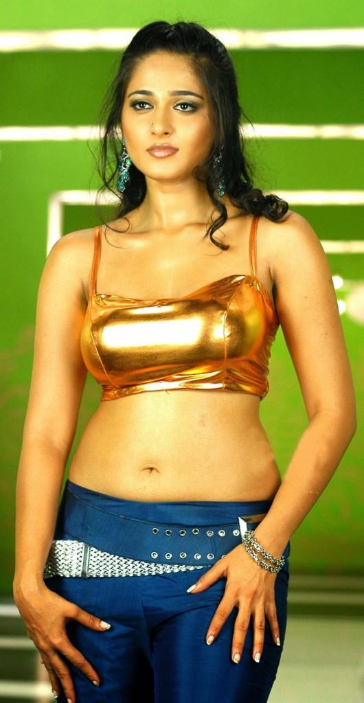 Anushka Shetty Wiki, Age, Biography, Movies, and Beautiful Photos 128