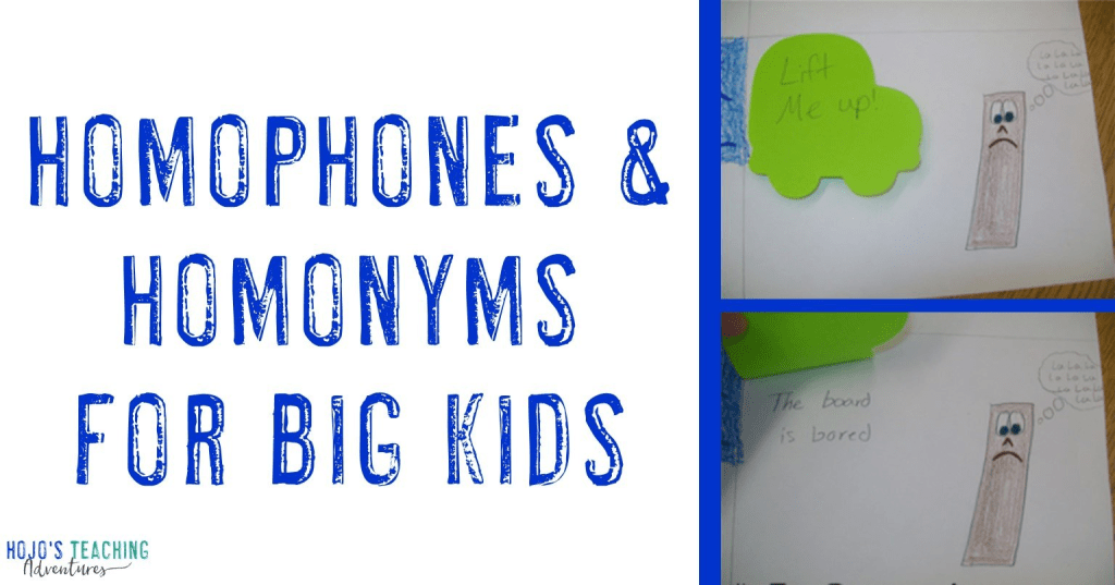 homophones & homonyms for big kids