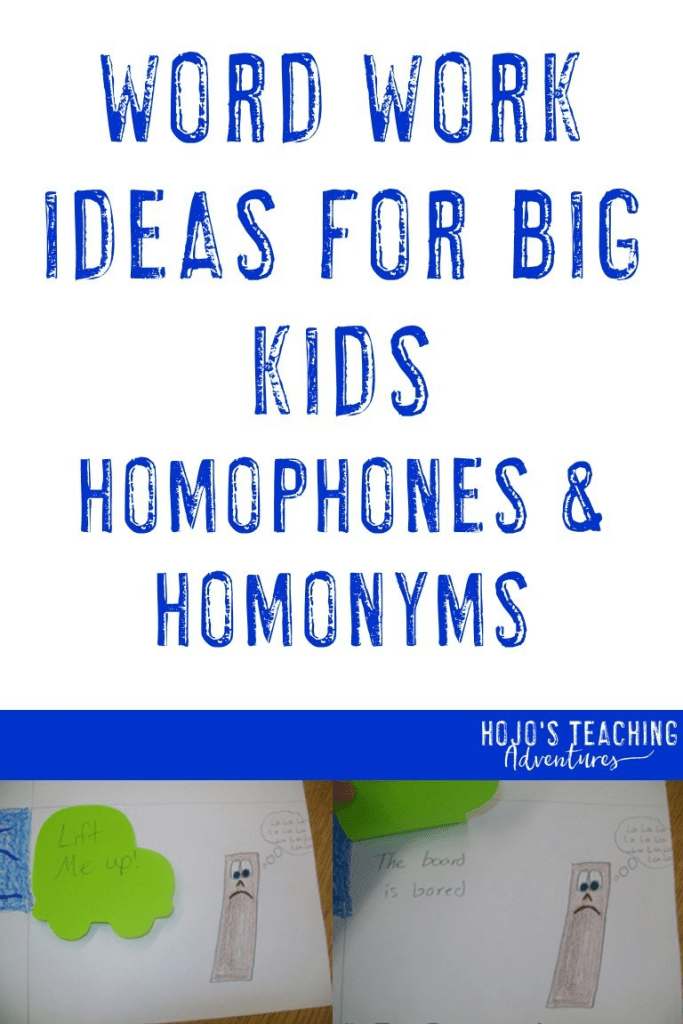 word work ideas for big kids homophones & homonyms