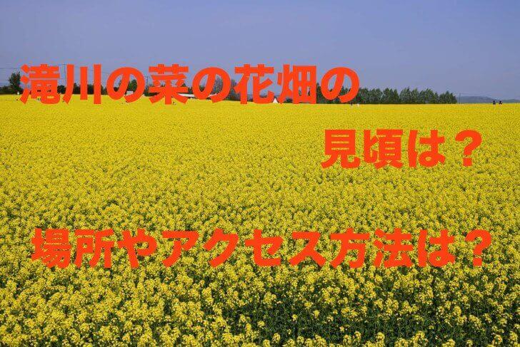 IMG_7976