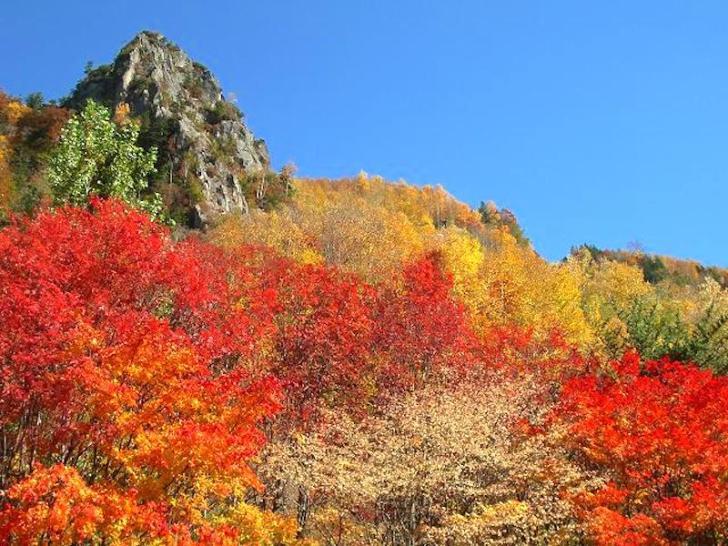 層雲峡・紅葉