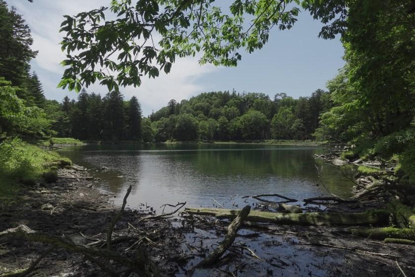 夏の太郎湖2