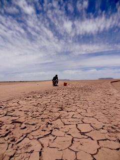 Wüsten-Kloschüssel