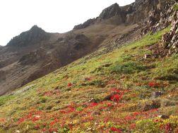 paisajes-de-alaska-img457