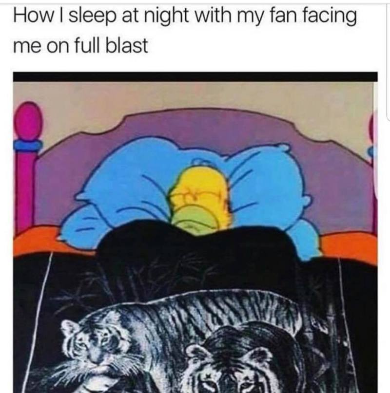 How I sleep at night with my fan facing me on full blast