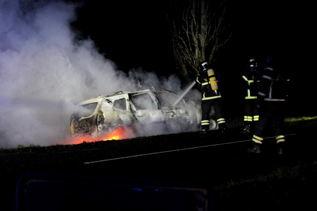 Bil ramte træ og brød i brand