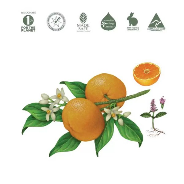 Mandarin and Peppermint natural ingredients for Koala Eco