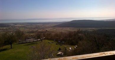 Vietnámi papucsban a Balaton-felvidéken: a Halom-hegy