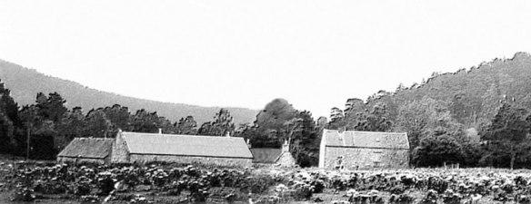 Mill-of-Cosh1