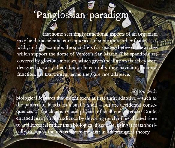 Panglossian Paradigm
