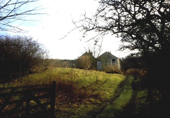 old-tin-house-in-drumdruills-orchard-1980s