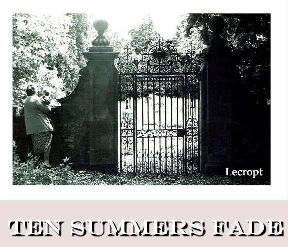ten-summers-fade