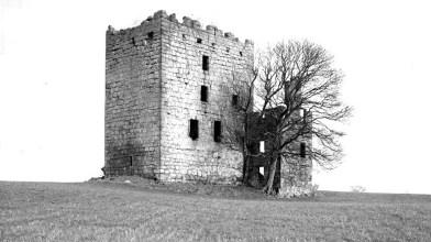Haining - Almond Castle (5)
