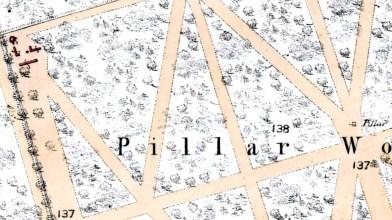 1858 OS map Panmure b