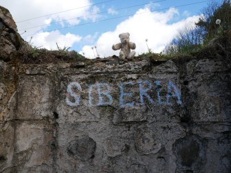 Siberia, Neuk of Fife 11 May 2019 (7)