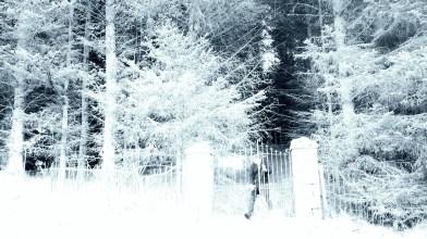 Whitehaugh Mausoleum - Thursday 2nd January 2020 (17)
