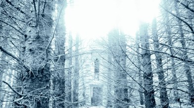Whitehaugh Mausoleum - Thursday 2nd January 2020 (5)