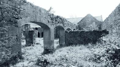 Corston Mill - May 2020 (5)