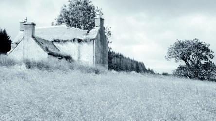 Glenour [Glenover] farm, South Ayrshire - Monday 20 July 2020 (9)