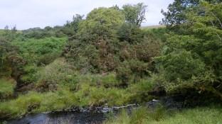 Peden's Mount, Glenour, South Ayrshire 20 July 2020 (3)
