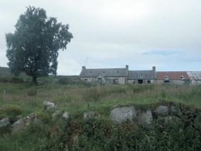 Easter Limekilns, Dava - visited by Peter Gordon, Sunday 2 Aug 2020 (6)