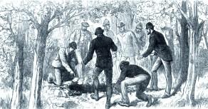 29 July 1882