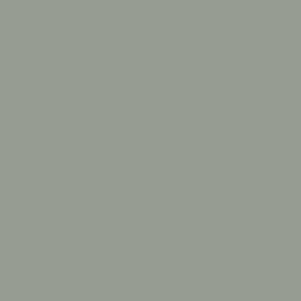 SW 9132 Acacia Haze